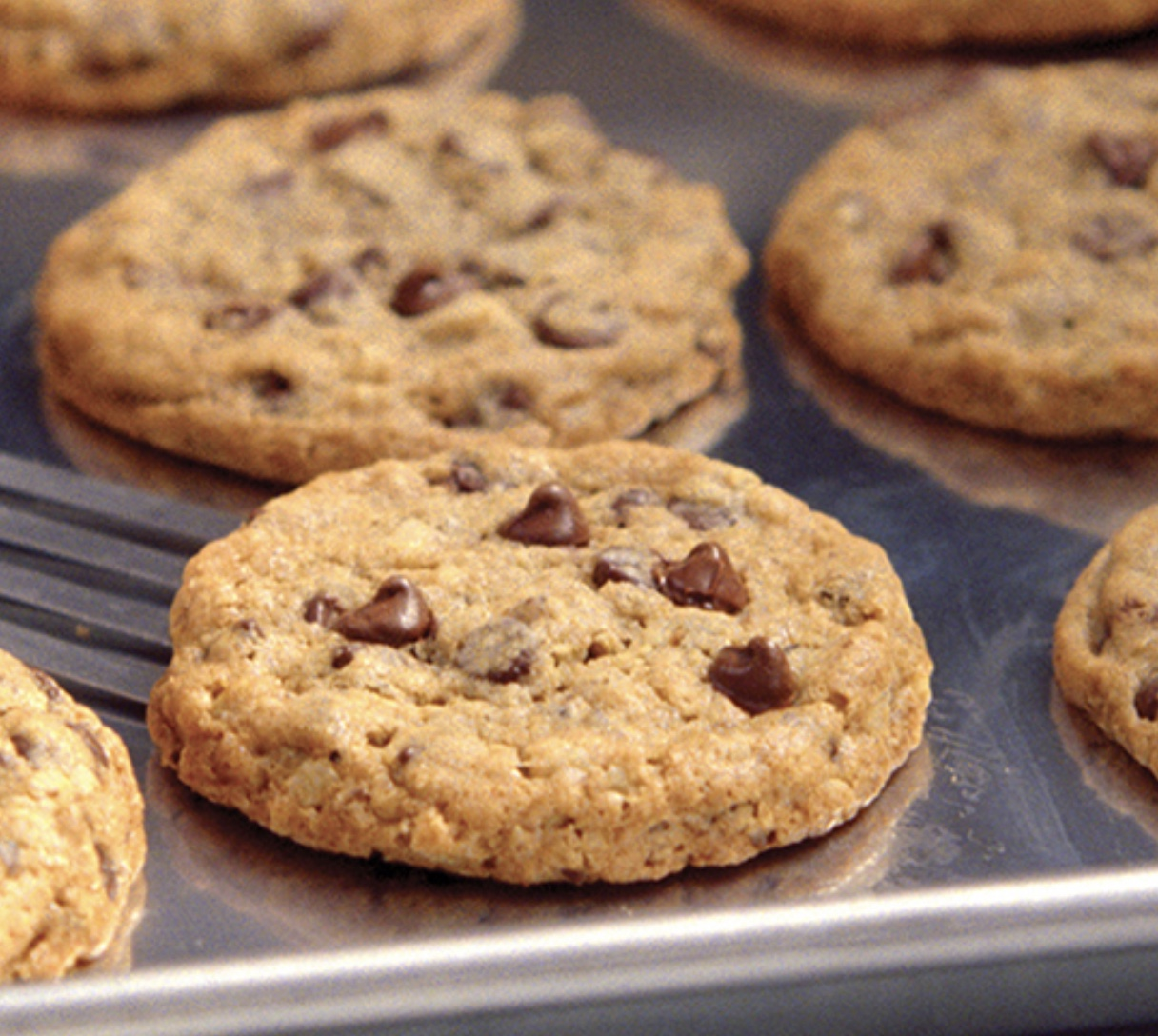 doubletree chocolate chip cookies on a pan